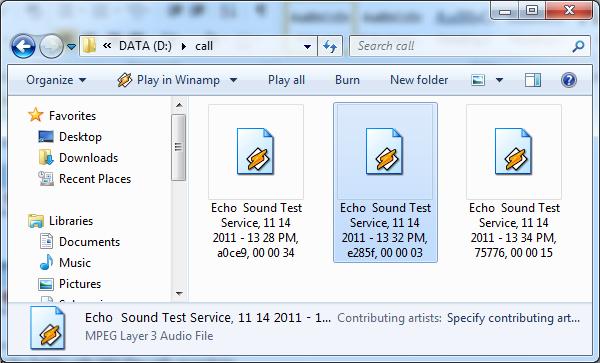 echo sound test service